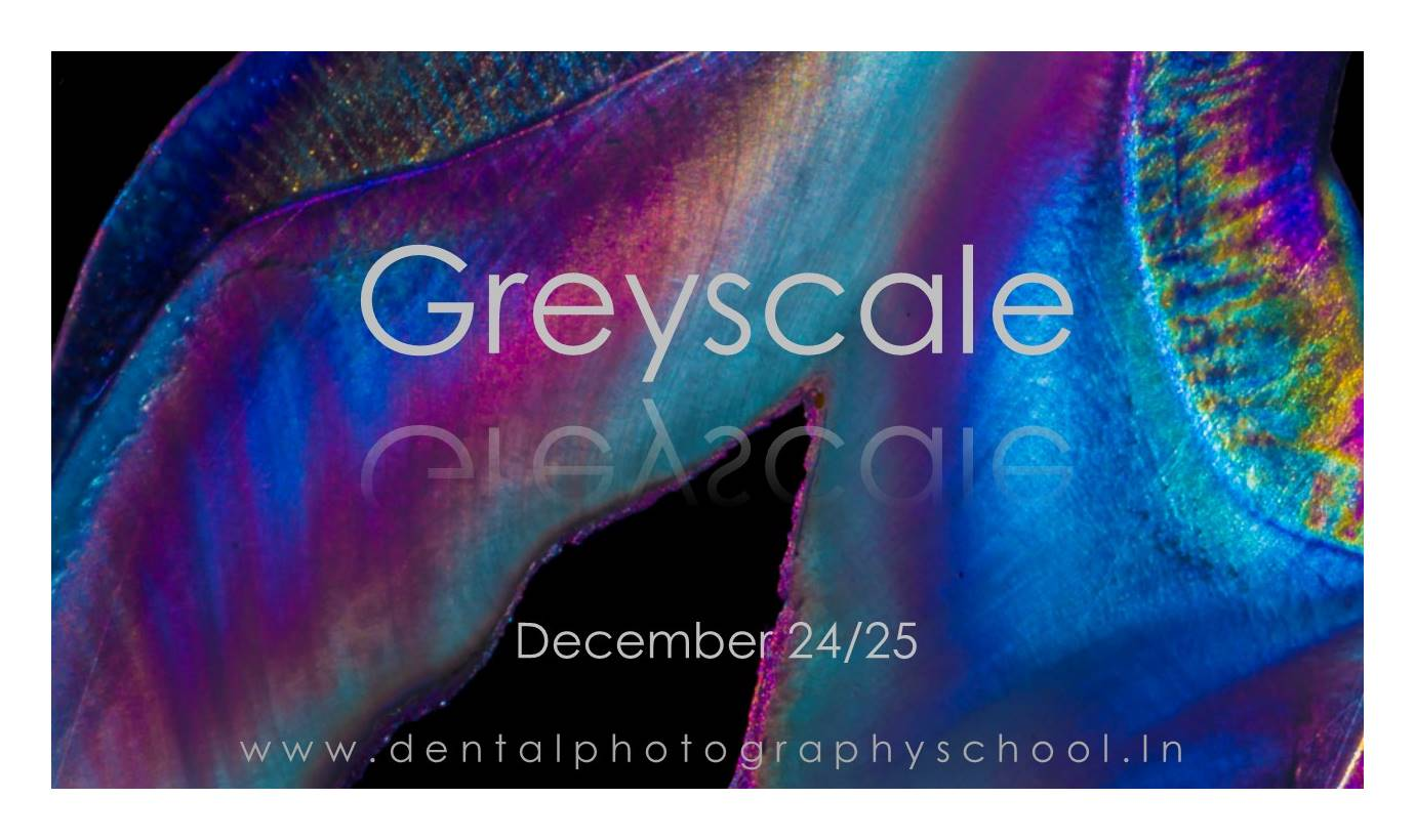 The most extensive workshop on dental photography is back in December 2017